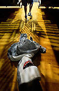 """Atlantic High School Sharks mascot Matthew Martinez walks away from his costume during the halftime show of a basketball game Friday night, January 16, 2004 in Daytona Beach, Fla. Martinez was taking a break from playing the mascot called """"Sharky."""" He said that the costume was """"very hot."""" The shark suit, """"Sharky,"""" has been around for 10 years, since the beginning of Atlantic High School, but was replaced at the beginning of the 2003-2004 school year with a brand new suit which shows up mostly for football and basketball games. Junior Matthew Martinez has played """"Sharky"""" since the beginning of football season, and according to Activities Director Loraine Crane, it has been a very good move for him to play the AHS mascot. (Craig LItten)<br /> <br /> RAN TUES, JAN. 27, 2004 (NEIGHBORS)"""