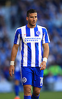 Brighton and Hove Tomer Hemed