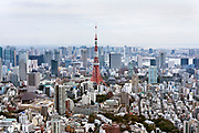aerial cityscape view towards Tokyo Tower and the Minato district from the direction of Roppongi Hills