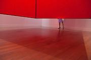 TOKYO, JAPAN, 1 SEPTEMBER - Roppongi - Exhibition GUTAI, The Spirit of an Era - Shiraga's Red Structure - Abstract artist Jiro Yoshihara  founded the movement in Ashiya, Hyogo Prefecture in 1954 and draft the Gutai Manifesto in 1956 -  In the National Art Center - Kisho Kurokawa architect & associates - September 2012