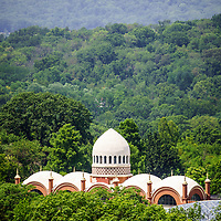 Photo of Cincinnati Zoo Elephant House roof dome from above along the trees. The Elephant House was built in 1906 and is part of the Cincinnati Zoo and Botanical Garden. Photo is vertical, high resolution and was taken in 2012.