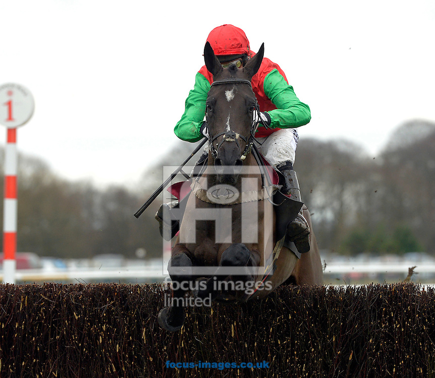 A preview of this weekend's favourites in UK Racing.<br /> Picture by Martin Lynch/Focus Images Ltd 07501333150<br /> 09/12/2016<br /> <br /> Original caption:<br /> TAQUIN DU SEUIL with A P McCoy wins Grade 2 Novice Chase at Peter Marsh Chase meeting at Haydock 18-1-14.