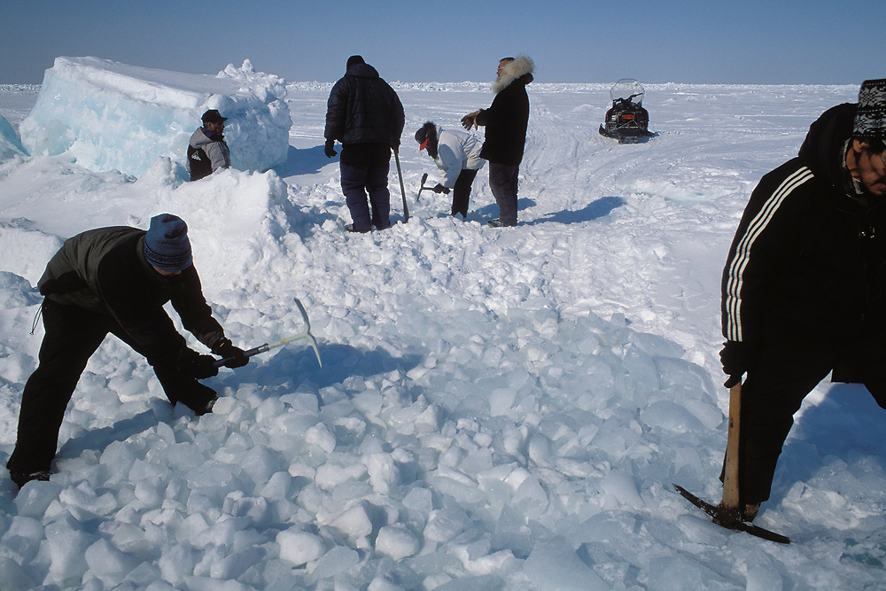Barrow, Alaska. The community helps clear a path in the icy coatline for the passage of the Umiak, a whale skin boat, on its way to launching after the whale hunt into the Chukchi Sea.