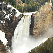 Lower Yellowstone Falls.  Yellowstone National Park, USA