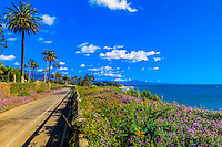 Scenic views along Channel Drive, Montecito (Santa Barbara), California USA.