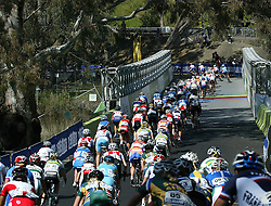 (Geelong, Australia---2 October 2010) The peloton makes its way over the Rainbow Bridge on the first lap of the 2010 Women's Road Championship at the 2010 UCI World Championships [2010 Copyright Sean Burges / Mundo Sport Images -- www.mundosportimages.com]