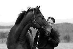 Horse Photography, Barracks Road Farm
