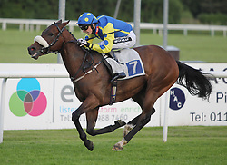 Miningrocks ridden by Phil Dennis wins the 8.10 The Vis-A-Vis Symposiums Handicap Stakes - Mandatory by-line: Jack Phillips/JMP - 21/06/2016 - HORSE RACING - Leicester Racecourse - Leicester, England - Leicester Racing