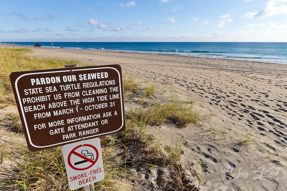 USA, Florida, Boca Raton.  A warning sign on the Florida coastline warning of seaweed that cannot be removed due to sea turtle nesting laws.