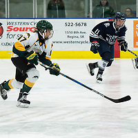 2nd year forward Lilla Carpenter-Boesch (17) of the Regina Cougars in action during the Women's Hockey home game on October 13 at Co-operators arena. Credit: Arthur Ward/Arthur Images