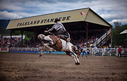 A cowboy competes in the broncos during 101st Falkland Stampede in Falkland, BC. (2019)