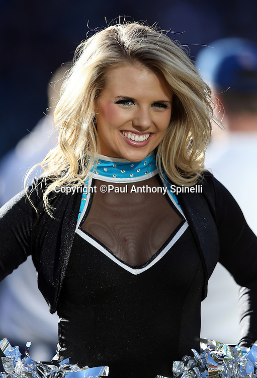 A Carolina Panthers cheerleader smiles as she cheers during the NFC Divisional Playoff NFL football game against the San Francisco 49ers on Sunday, Jan. 12, 2014 in Charlotte, N.C. The 49ers won the game 23-10. ©Paul Anthony Spinelli