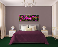 Room Display<br /> Image:  20 X 60 Canvas - Catawba Rhododenron,Carver's Gap, Tennessee ID#2017 0614 7132<br /> <br /> template by: www.arianafalerni.com