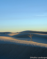 Early morning light streaks across the dunes at Monahans Sandhills State Park.<br /> <br /> Available Sizes: 8x10, 12x15, 16x20