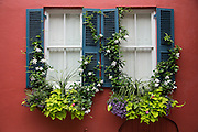Flower window baskets an shutters on a historic home on Tradd Street in Charleston, SC.