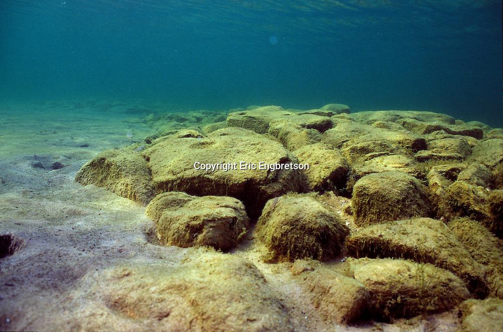 Underwater Scene, Lake Michigan<br /> <br /> ENGBRETSON UNDERWATER PHOTO