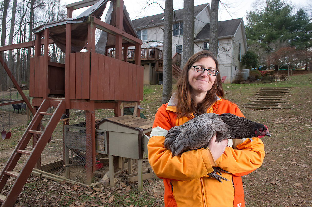Woman holding a chicken in the backyard near a chicken house in Eldersburg, Maryland, USA
