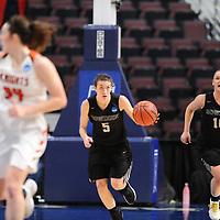 Women's Basketball: Bowdoin College Polar Bears vs. Wartburg College Knights