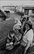 SINTESTI, ROMANIA, 1991..©JEREMY SUTTON-HIBBERT 2000..TEL./FAX.  +44-141-649-2912..tel. +44-7831-138817.EMAIL J.S.HIBBERT@BTINTERNET.COM