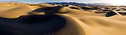 Gigapixle panorama of Mesquite Sand Dunes in Death Valley National Park in pristine condition the morning after a frequent wind storm.