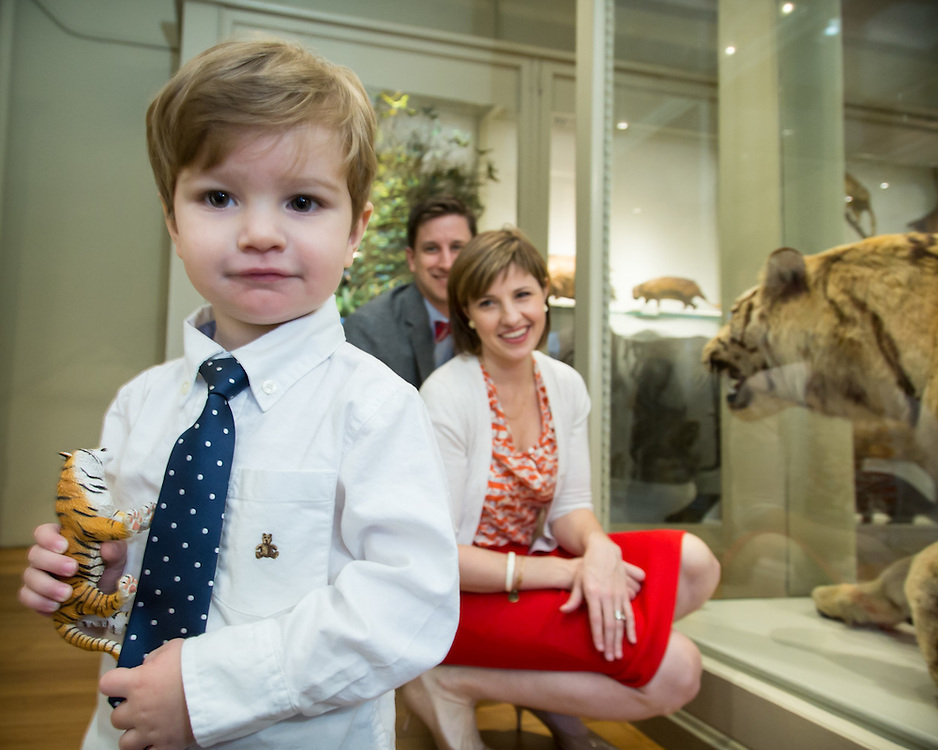 Family photo session at Harvard Museum surrounded by taxidermy animals. Son with toy tiger.