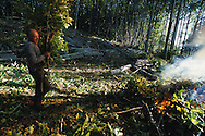 Burning the arms during a cut of wood