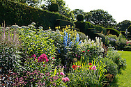 Herbaceous borders and box topiary in the walled garden at Arley Hall, Northwich, Chesire, UK