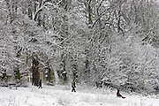 Children toboggan down snow-covered Hampstead Heath, North London, United Kingdom