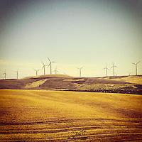 Wind mills in Cecil, Oregon