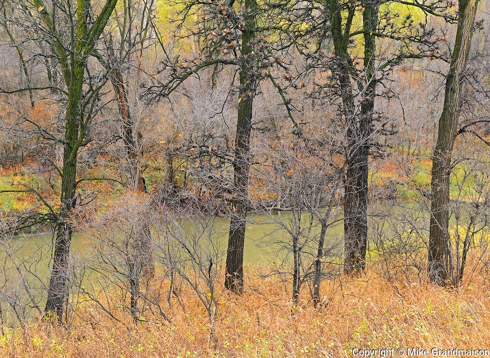 Late autumn foliage along the Seine River<br />Winnipeg<br />Manitoba<br />Canada