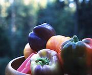 Bowl of bell pepper varieties.