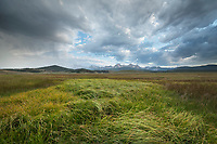 Evening storm over meadows of Stanley Basin. Sawtooth Mountains Idaho