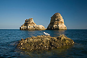 Algarve, southern coast of Portugal on Atlantic Ocean photo Piotr Gesicki Eroded rocks in the ocean near Lagos town