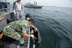 Indonesia: Boat accident in Batam, 4 Nov. 2016