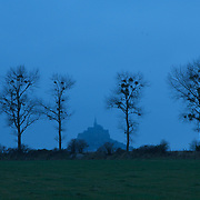 Mont-Saint-Michel through trees
