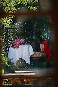 Outdoor Afternoon Tea Setting in sun dappled garden, looking through french doors.
