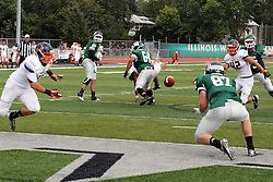 28 September 2013:  Rob Gallik passes to Taylor Dee for a touchdown during an NCAA division 3 football game between the Hope College Flying Dutchmen and the Illinois Wesleyan Titans in Tucci Stadium on Wilder Field, Bloomington IL