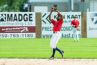 KELOWNA, BC - JULY 06:  Richi Sede #4 of the Kelowna Falcons catches a fly ball against the Walla Walla Sweets at Elks Stadium on July 6, 2019 in Kelowna, Canada. (Photo by Marissa Baecker/Shoot the Breeze)