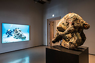 "Venezia - Palazzo Grassi . La mostra di Damien Hirst: ""Tresaures from the Wreck of Unbelievable. ""Skulls of   a Cyclops""."