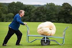 © Licensed to London News Pictures. 16/09/2016. Harrogate UK. Picture shows Brian Marshall & his prize winning Pumpkin that weighed 139.5 KG at the Giant vegetable competition in Harrogate. The competition see's competitors from across the UK show their biggest Carrot's, Cucumbers, Cabbages, Onion's & Tomatoes competing for the title of heaviest & longest at the Harrogate Autumn Flower Show. Photo credit: Andrew McCaren/LNP