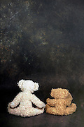 two teddy bears are sitting with the back to the viewer