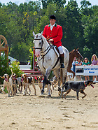 2019 Ludwig's Corner Horse Show