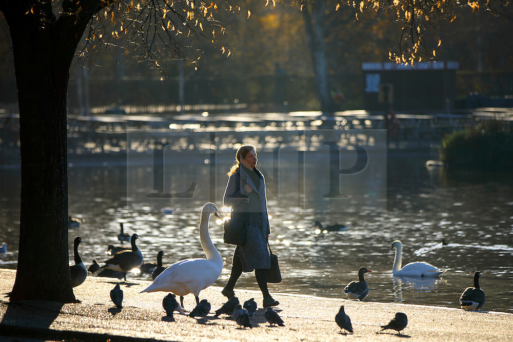 © Licensed to London News Pictures. 29/11/2016. London, UK. People walk past the Serpentine Lake in Hyde Park, London on a frosty morning as temperatures in the capital drop as low as -3C on Tuesday, 29 November 2016. Photo credit: Tolga Akmen/LNP