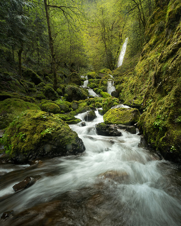 Gorton Creek, Wyath Campgrounds, Columbia River Gorge, Hood River County, Oregon