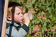 "June 16, 2008 -- COLORADO CITY, AZ: A youngster in the Jessop family drinks a bottle of juice while watching his relatives weed the community corn plot in Colorado City, AZ. The Jessops are a polygamous family and members of the FLDS. Colorado City and neighboring town of Hildale, UT, are home to the Fundamentalist Church of Jesus Christ of Latter Day Saints (FLDS) which split from the mainstream Church of Jesus Christ of Latter Day Saints (Mormons) after the Mormons banned plural marriage (polygamy) in 1890 so that Utah could gain statehood into the United States. The FLDS Prophet (leader), Warren Jeffs, has been convicted in Utah of ""rape as an accomplice"" for arranging the marriage of teenage girl to her cousin and is currently on trial for similar, those less serious, charges in Arizona. After Texas child protection authorities raided the Yearning for Zion Ranch, (the FLDS compound in Eldorado, TX) many members of the FLDS community in Colorado City/Hildale fear either Arizona or Utah authorities could raid their homes in the same way. Older members of the community still remember the Short Creek Raid of 1953 when Arizona authorities using National Guard troops, raided the community, arresting the men and placing women and children in ""protective"" custody. After two years in foster care, the women and children returned to their homes. After the raid, the FLDS Church eliminated any connection to the ""Short Creek raid"" by renaming their town Colorado City in Arizona and Hildale in Utah.   Photo by Jack Kurtz"