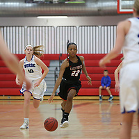Women's Basketball: Lake Forest College Foresters vs. Luther College Norse