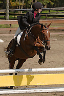 A competitor rides her horse over a jump during the English riding part of the Middletown Rotary Club's 63rd annual Charity Horse Show at Fancher Davidge Park on Sept. 17, 2006.