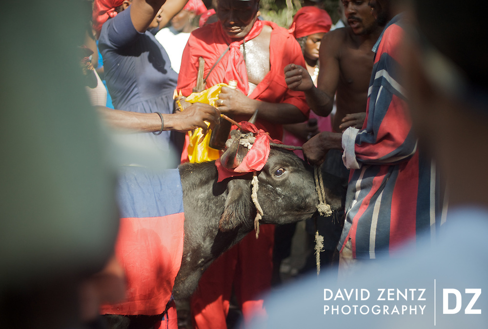 Photos from the Plane du Nord voodoo festival, south of Cap Haitien