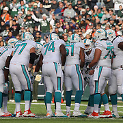Miami Dolphins quarterback Ryan Tannehill talks to the offensive line during the New York Jets Vs Miami Dolphins  NFL American Football game at MetLife Stadium, East Rutherford, NJ, USA. 1st December 2013. Photo Tim Clayton