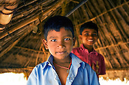 Young Boys, India